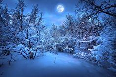 mañanas invernales - Buscar con Google
