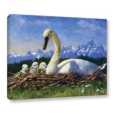 Loon Peak Swan Nest Photographic Print on Wrapped Canvas Size: