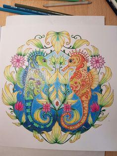 Prismacolor Pencil... Johanna Basford^^ Magical jungle
