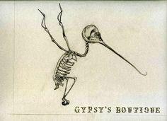 hummingbird skeleton - Google Search