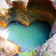 Abseil down this heart-shaped natural pool in Killarney Glen in Lower Beechmont. | 17 Amazing Places To Go On The Gold Coast That Aren't The Beach