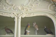 Cabinet of Curiosities of Bonnier de la Mosson, Paris | Flickr - Photo Sharing!