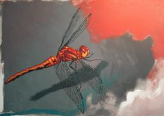 Red Dragonfly - by @Matt C Bearden