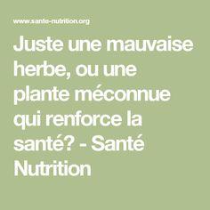 Juste une mauvaise herbe, ou une plante méconnue qui renforce la santé? - Santé Nutrition