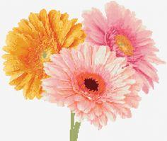 Gerbera daisy free cross stitch pattern