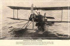aerosngcanela: O amigo alado do aviador