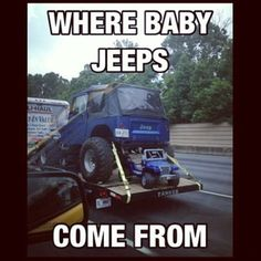 Baby Jeeps:)