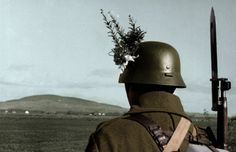 hungarian soldier with flower in his helmet. october Gyalogsagi Hosszú Puska és Puska A standard knife bayonet Second World, Historical Pictures, Luftwaffe, Held, Personal Photo, World War Ii, Ww2, Riding Helmets, Cute Dogs