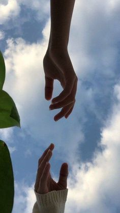 Hand Photography, Aesthetic Photography Nature, Couple Photography Poses, Tumblr Photography, Aesthetic Roses, Sky Aesthetic, Hand Pictures, Cool Girl Pictures, Profile Pictures Instagram