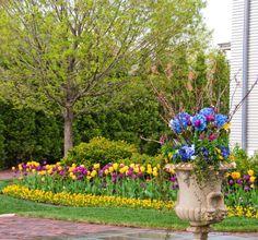 Der Garten Im Frühling Blüht Und Duftet, Zieht Die Vögel Und Schmetterlinge  An. Wer Sich über Einen Schönen Garten Im Mai Freuen Möchte, Muss Schon Ab  März