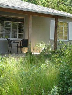 Landscaping, Plants, Yard Landscaping, Plant, Landscape Architecture, Garden Design, Planets, Landscape Design