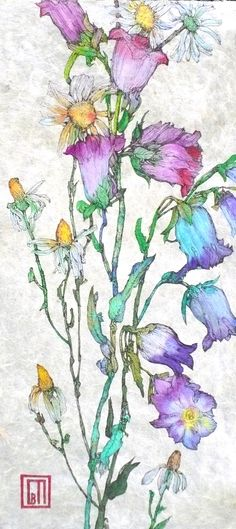 Field Flowers  SOFIA PERINA-MILLER