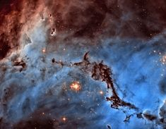 N11: Star Clouds of the LMC  Image Credit: NASA, ESA, J. Lake (Pomfret School