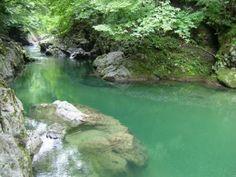 五泉市を代表する川、早出川の支流『仙見川』。昔から地元で親しまれている川は、下流では川遊びをする子供達のにぎやかな声が聞こえ、上流にのぼっていくと雰囲気は一変。川のせせらぎと野鳥のさえずりが聞こえてきます。  ●延長:6km ●スポット 上流:つぼ滝・長瀞 下流:仙見川河川公園