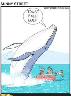 Funny pictures about Trust fall. Oh, and cool pics about Trust fall. Also, Trust fall. Funny Shit, Haha Funny, Funny Cute, Funny Stuff, Freaking Hilarious, Memes Humor, Funny Memes, Funny Ads, Humor Quotes