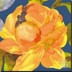 Night Flower I Stretched Canvas Print by Sandra Jacobs at Art.com