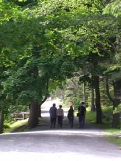 Lots of walking trails in Point Pleasant Park, Halifax East Coast Canada, Shakespeare In The Park, City By The Sea, Online Tickets, Canada Travel, Nova Scotia, Trip Advisor, Places To Go, Walking