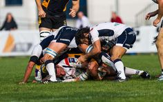 Mogliano-Wasps challenge cup rugby onrugby