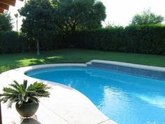 60 Spectacular Kidney Shaped Swimming Pools For Your Patio