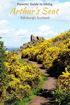 Parent's Guide to Hiking Arthur's Seat with Kids-- also known as the quick and easy way to get up a hill no matter your age.