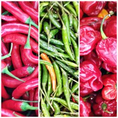 Many types of chillies on Maureen Peck's stall near Lancaster Road