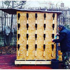 Questa cabina sarà il nostro pipi-ponic-compost-toilet. La parete laterale ospita un sistema di bottiglie tagliate e fissate con semplici fascette a strutture di legno. Dentro vi cresceranno diverse varietà di succulente. Cioè di piccole piante grasse. Collaborazione col brand Santa Cristina, che ci ha offerto bottiglie e casse di legno