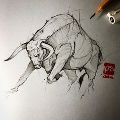 Image may contain: drawing Animal Sketches, Animal Drawings, Drawing Sketches, Pencil Drawings, Art Drawings, Taurus Bull Tattoos, Desenho Tattoo, Sketch Painting, Ink Illustrations