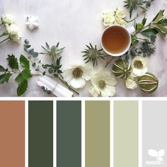 999 отметок «Нравится», 10 комментариев — Jessica Colaluca, Design Seeds (@designseeds) в Instagram: «today's inspiration image for { serving season } is by @c_colli ... thank you, Cristina, for…»