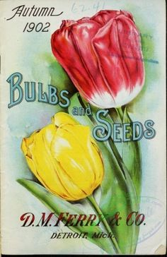 Ferry & Co. - Bulbs and seeds - Autumn 1902 Garden Catalogs, Seed Catalogs, Bulbs And Seeds, Seed Art, Garden Labels, Vintage Seed Packets, Seed Packaging, Vintage Gardening, Garden Seeds