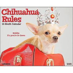 Chihuahua Rules 2015 Wall Calendar: 9781623432379 | Chihuahuas | DogBreedStore.com