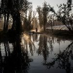 Xochimilco Journal: An Aquatic Paradise in Mexico, Pushed to the Edge of Extinction  -----------------------------   #news #buzzvero #events #lastminute #reuters #cnn #abcnews #bbc #foxnews #localnews #nationalnews #worldnews #новости #newspaper #noticias