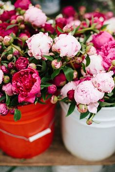Peonies at market