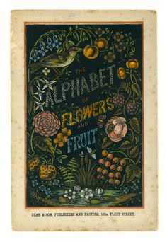 The Alphabet of Flowers and Fruit / Vintage book cover