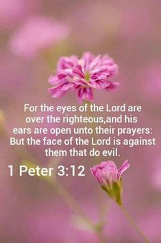 1 Peter (KJV) - For the eyes of the Lord are over the righteous, and His ears are open unto their prayers: but the face of the Lord is against them that do evil. Bible Verses Quotes, Bible Scriptures, Faith Quotes, King James Bible Verses, Favorite Bible Verses, 1 Peter, Praise God, Spiritual Quotes, Trust God