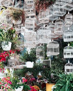 Quebec, Marie Instagram, Flowers Canada, Rue Sainte Catherine, Wide World, Paris, Dream Vacations, City Photo, Places To Go
