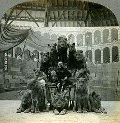 Russian lion tamer