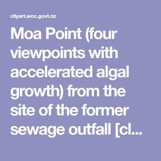 Moa Point (four viewpoints with accelerated algal growth) from the site of the former sewage outfall [closed Wellington, Wellington City
