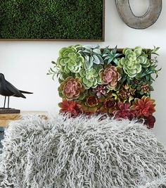 How To Make An Ombre Succulent Wall Art