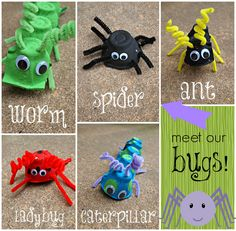 Learn how to make bugs using egg cartons. A true kid classic craft!