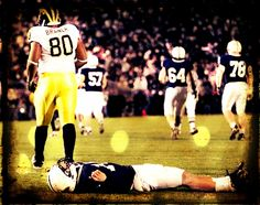 What just hit me? Oh, it was a Michigan Wolverine!