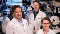 Gladstone Teams Renew Federal Funding for Research on Congenital Heart Disease | Gladstone Institutes – Science Overcoming Disease