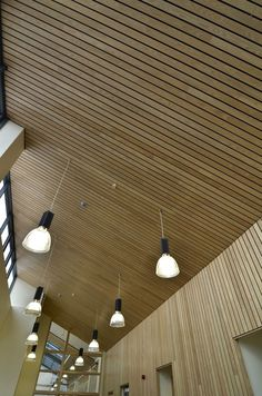 Wood ceilings can fit a range of applications from commercial ceilings, to hotel ceilings, restaurant ceilings, lecture halls, and more. http://www2.hunterdouglascontract.com/en-GB/ceilings/wood/index.jsp: