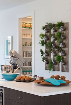 Growing Fresh Herbs In Your Kitchen Is Easier And More Stylish Than Ever With This Wall Mount Mason Jar Herb Garden Diy Project Pairs Functionality