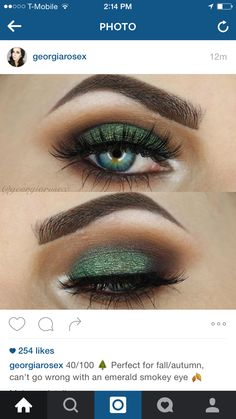 Love green for the fall Slate in corner and on brow, forest on lid, oak in crease, amber blended above crease and under the eye.
