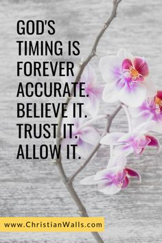 God's timing is forever accurate Believe it Trust it Allow it Inspirational Bible Quotes. Bible Verses Quotes, Faith Quotes, Scriptures, Trust Gods Timing, Gods Timing Quotes, Seeking God, Religious Quotes, Quotes About God, Spiritual Inspiration