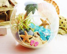 Mini Summer Ocean Theme Decor Succulents XQK 60Pcs//Set Beach Style Miniature Succulents Ornament Kits Set for DIY Dollhouse Decoration