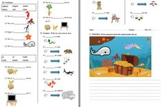 This is a beginners / lower primary English as a Second Language (ESL) examination. It was given to primary-school grade 2 students in Asia whose native language was not English.If you're finding it difficult to write or format a test for young ESL children, or low level learners, this exam is ready to print and use - just add your school name!The exam starts with a READING PASSAGE about a girl who is visiting the seaside, her name, age, her mother and brother, and what they can see and are…