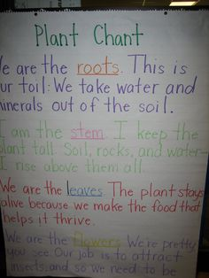Plant chant to remember the parts of a plant :)