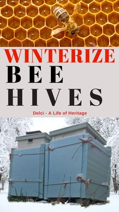 If you own bees in a really cold temperatures then it would be wise to prepare them for winter. Get them ready by keeping them warm and dry from the elements of snow, rain and wind. How To Start Beekeeping, Beekeeping For Beginners, Honey Bee Hives, Honey Bees, Buzzy Bee, Raising Bees, Backyard Beekeeping, Bee Friendly, Worm Composting