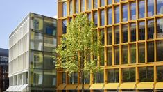 Gallery of New Ludgate / Fletcher Priest Architects + Sauerbruch Hutton Architects - 8